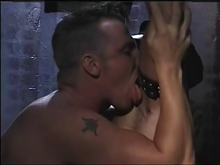 Gay Porn (Gay);Men (Gay) Leather hairy men