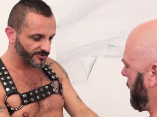 Bareback (Gay),Bears (Gay),Blowjob (Gay),Gays (Gay),HD Gays (Gay) Mature bear barebacking leather bottom