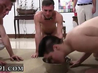 gay Naked male with cow sex video