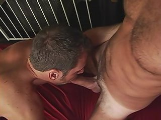 anal,mature,gays,kissing,anal sex,hardcore,mature sex,gay L.U.S.T.