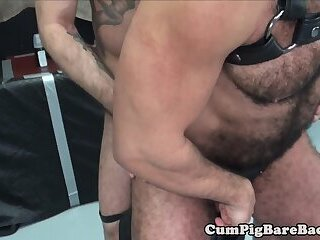 Anal,Cumshot,Bears,Mature,Bareback,hairy ass,gay Hairy bear rimmed and sprayed with cum